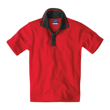Picture of Custom striped collar polo