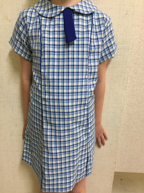 Picture of St Marys Primary School Dress