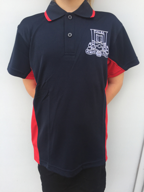 Picture of Pialba State School Day Polo