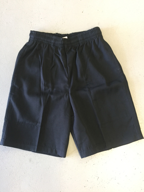 Picture of Urangan Point School Scags Shorts