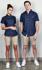 Picture of Identitee-CH03(Identitee)-Men's Modern Chino Short with Stretch